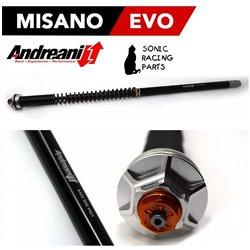 105/A02E CARTRIDGE ANDREANI MISANO EVO APRILIA DORSODURO 750 (SHOWA) 2009 2012